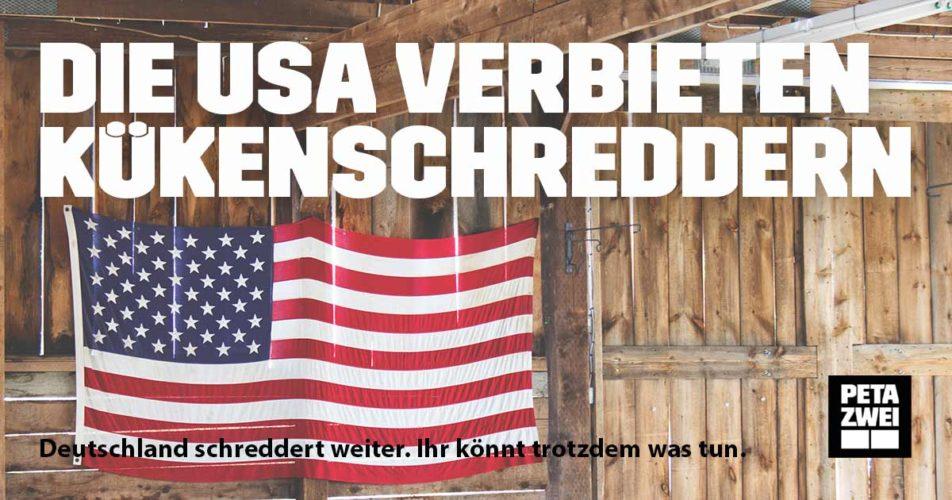 USA: Kein Kükenschreddern mehr ab 2020