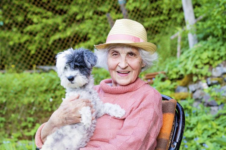 Haustierhilfe für Senioren